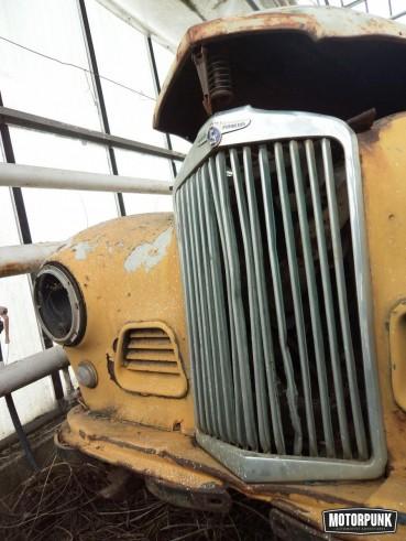 Europes Biggest Barnfind 850 Classics In A Greenhouse O MotorPunk