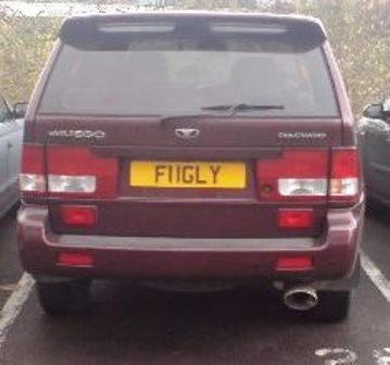 novelty registration plate nonsense (3)